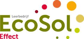 ecosol-effect-haarlem